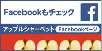 Facebookもチェック アップルシャーベットFacebookページ
